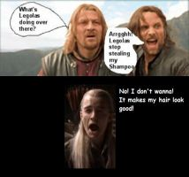 Shampoo Funny - LOTR by COURTishLamb92