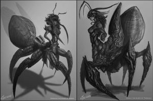 Grayscale Concepts by Cycrone