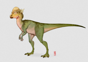 Pachycephalosaurus by CamaraSketch