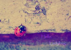 Red lady...bug by Nincebo