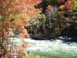 The Ocoee River Fall 2009 by CrystalMarineGallery