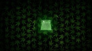 A Bag Of Weed by StArL0rd84