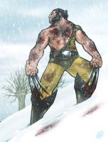Wolverine by AdamWithers
