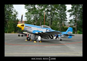 P-51 Mustang by Luv2suspendyou