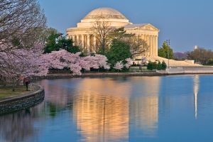 Jefferson Dawn Memorial by somadjinn