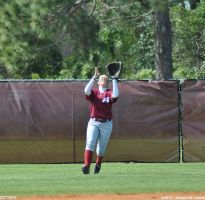 Flyball for Williamson by Joseph-W-Johns