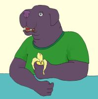 banaan coloured by inner-etch