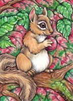 ACEO: Chipmunk by Agaave