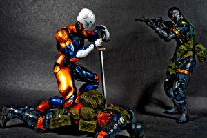 Grey Fox 06 by twohand