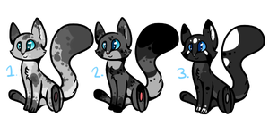 Kitty Adoptables :Closed: by DaPuddingz