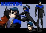 NIGHTWING ANIMATED by CHUBETO