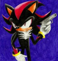 Shadow The Hedgehog by TatsuoMizushima