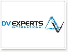 DV Experts logo by wasimshahzad