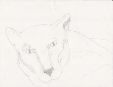 Mountain Lion - WIP by RedWolf75