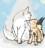 Pearlsnow and Sunpaw by Corralfur