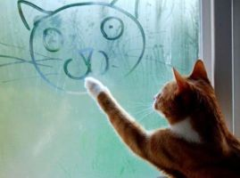 Cat self-portrait by KangarooLover