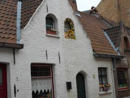 Little houses from Bruges by BloodyBetty666