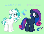 Winter Wind And Color Moon by MAPSpony