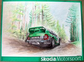 Skoda Fabia WRC 2004 by machoart