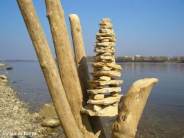 driftwood pagoda in hungary by tamas kanya by tom-tom1969