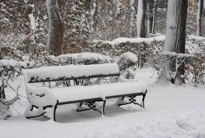 Winter bench by marble911