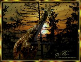 Giraffe at sunset 2013 by nudagimo