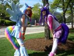 MLP: FiM Rainbow Dash and Twilight Sparkle by ToonTwins