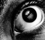 eye by pelinnkilic