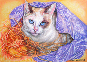 My Lucky Cat by SummerSucculence