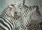 Zebra (watercolor) by helenyuqing