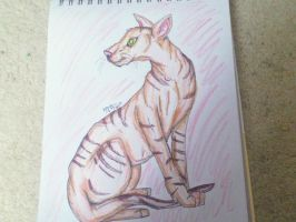 Hairless Cat by FALLEN-WARRIOR-008