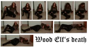 Wood Elf's death by syccas-stock