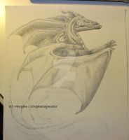 Dragon - WIP 2 by xXopheliajaneXx