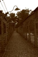 Auschwitz 2 by Glamour-and-Abuse