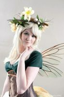 DC 2013: Summer Fairy by melvinopolis