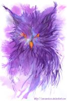 Owl in Purple by Carcaneloce