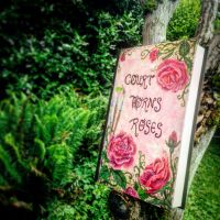 A Court of Thorns and Roses DIY cover by Darlingeek