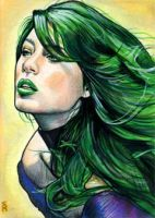 Polaris Sketch Card 2 by veripwolf