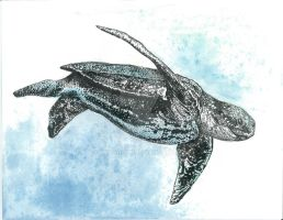 Leatherback Sea Turtle by emfagan1