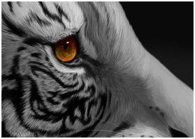 Eye of the Tiger by 1skylight1