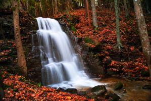 Autumn Waterfall by dannesyd