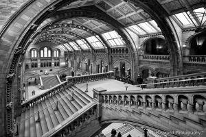 Natural history Museum 146-13j by mym8rick