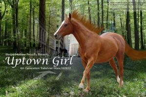 Uptown Girl by JuneButterfly-stock