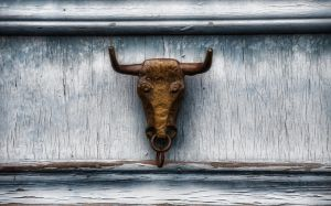 The Door Bull by HenrikSundholm