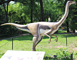 Gallimimus bullatus by Lynus-the-Porcupine