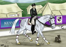 Dizzy dressage by Louvan
