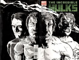 Lou Ferrigno/Bill Bixby Hulk Sketch Cover by tedwoodsart
