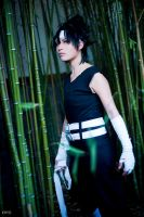 Hiei-Yama by MadeinPlute