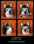 Artis by WMW66-costumes