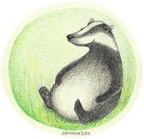 happy badger by joniina